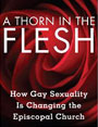 Book Cover - A Thorn in the Flesh: How Gay Sexuality is Changing the Episcopal Church